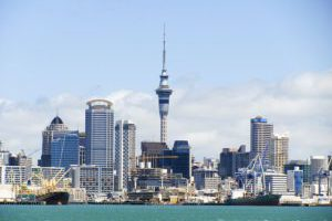 NZ Companies Invest in CRM Solutions and Technology