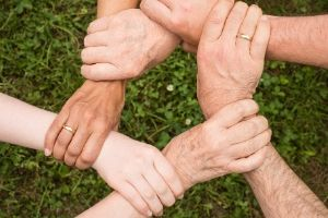 More Organisations Turn to SAP SuccessFactors Solutions